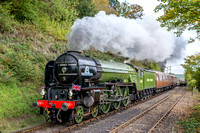 17 October 2015. Tornado & Royal Scot on the SVR