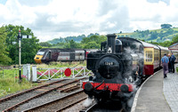 17 June 2016. South Devon Railway - part 2