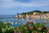 From 23 June 2014. Sestri Levante.