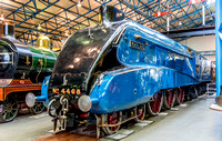 27 September 2014. Another visit to the NRM.