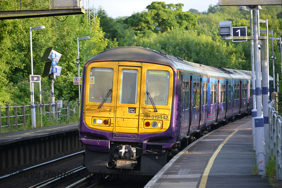 Eynesford to Blackfriars Station with a Class 319.